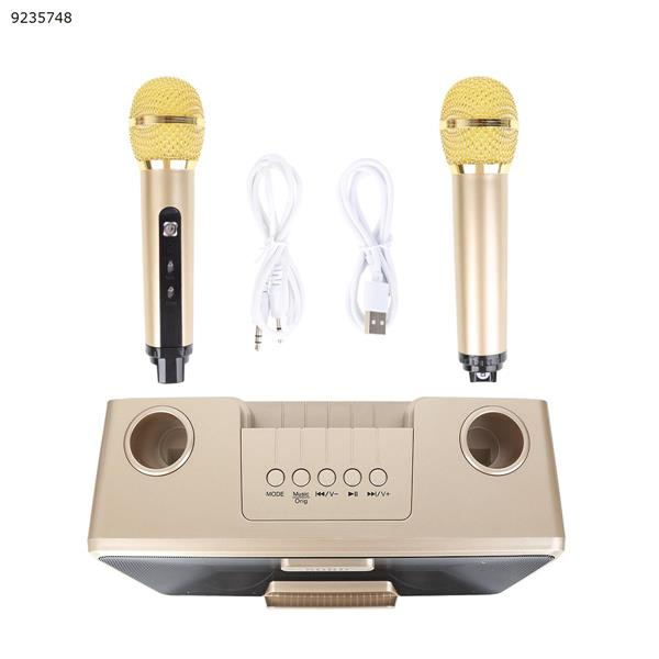 SD301 dual microphone outdoor portable wireless microphone bluetooth speaker (golden) Bluetooth Speakers N/A